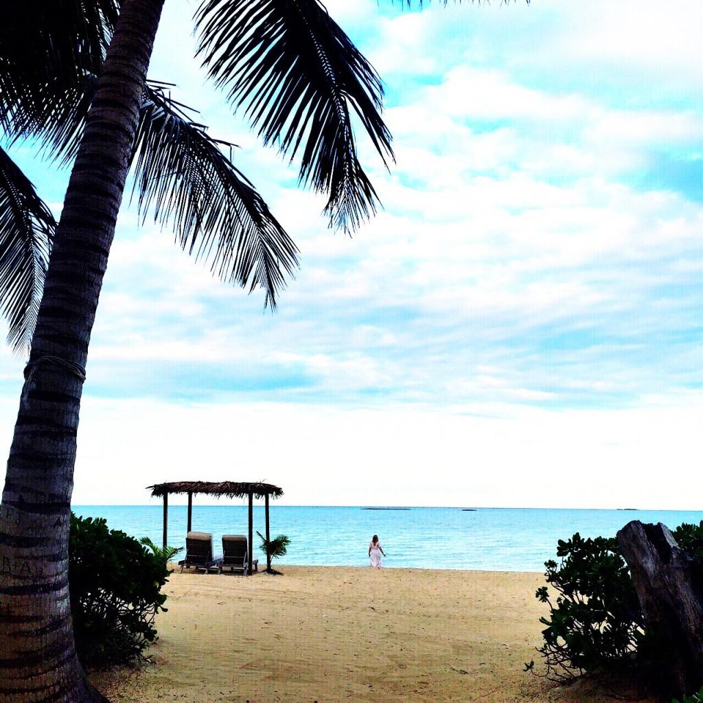 Beach Wandering
